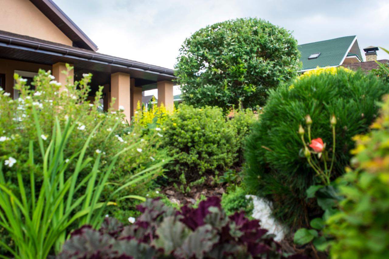 Советы по благоустройству и озеленению вашего сада